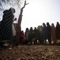 La giornata mondiale degli operatori umanitari