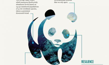 Wwf e la scomparsa della fauna selvatica
