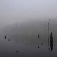 Il derby della nebbia