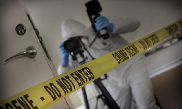 La scena del crimine si illumina