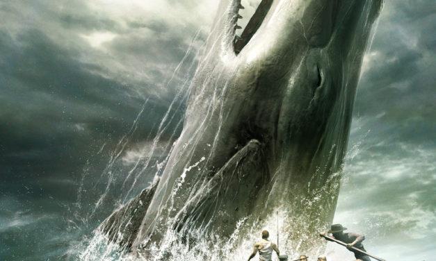 Roma, una balena ferita