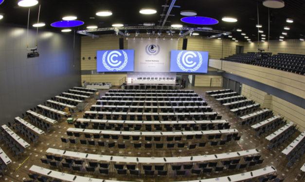COP23, nulla da segnalare