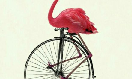L'invenzione della bicicletta